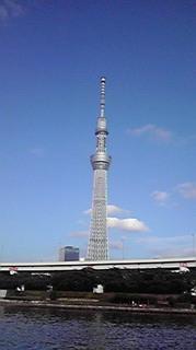 関川ブログスカイツリー2.jpg